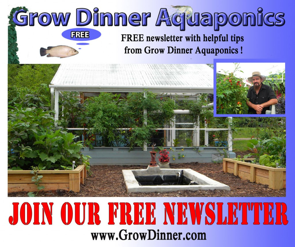 Join our free newsletter