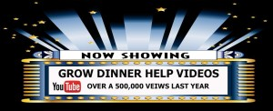 OVER-500,000-VIEWS-LAST-YEAR