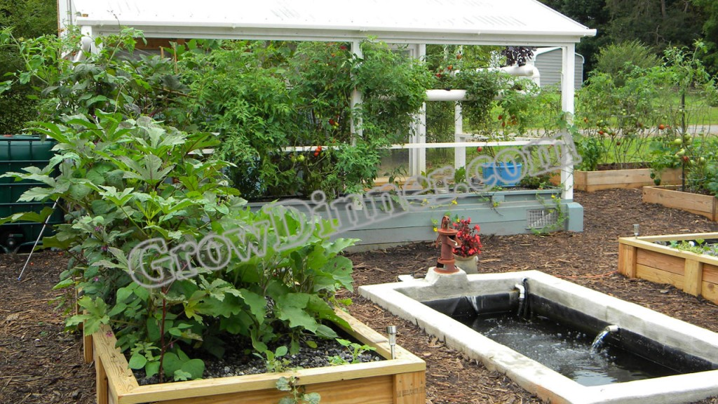 Side-Greenhouse-with-Chris-